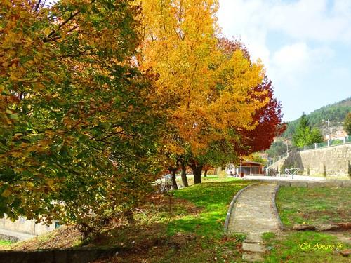 Fotos de Outono !!! 019.jpg