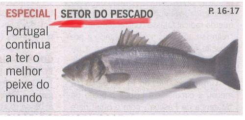 Professora peixe dá aulas ao pescado (Mundo ... coiso....)