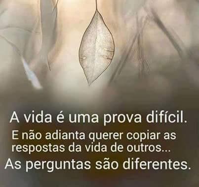 FB_IMG_1462818870527.jpg
