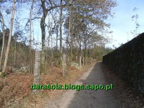 Trilho_Eiras_Famalicao_10.JPG