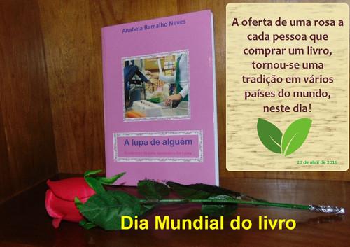 livro12 copy.jpg