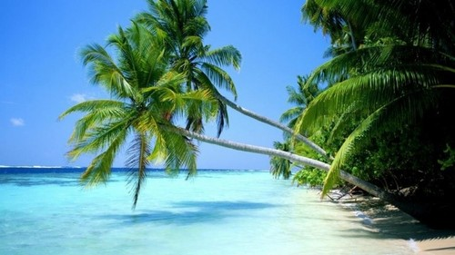 Caraibas.jpg