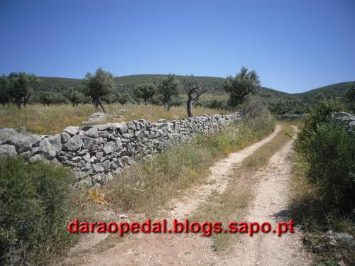Fatima_Tomar_084.JPG