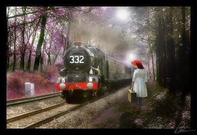 trem da vida[1].jpg
