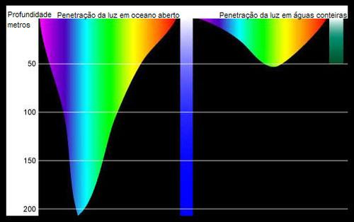 penetracao_luz_oceano.jpg