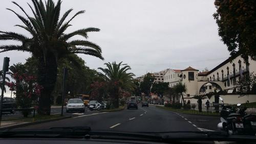Madeira (59).jpg