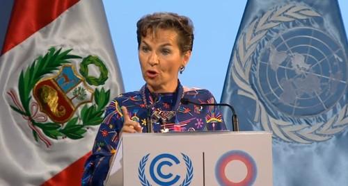COP20_OC7._CF.jpg