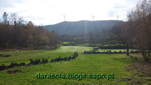 Burgo_11.jpg