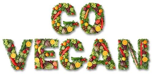 go-vegan.jpg