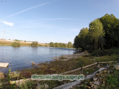 Margens rio Ave Trofa 15.JPG