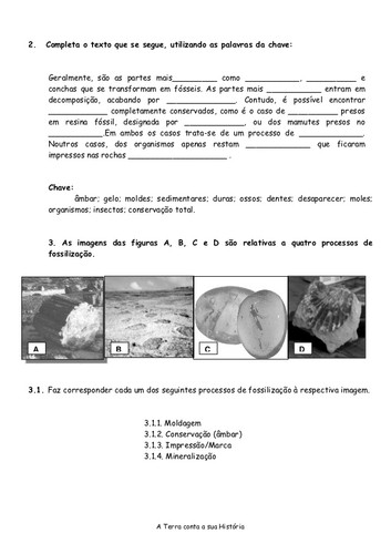 fsseis-ficha-2-638.jpg
