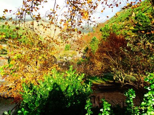 Fotos de Outono !!! 088.jpg
