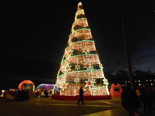 Árvore de Natal 2014 Praça do Comércio 1.JPG