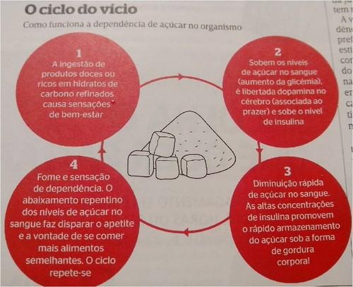 ciclo do açucar.jpg