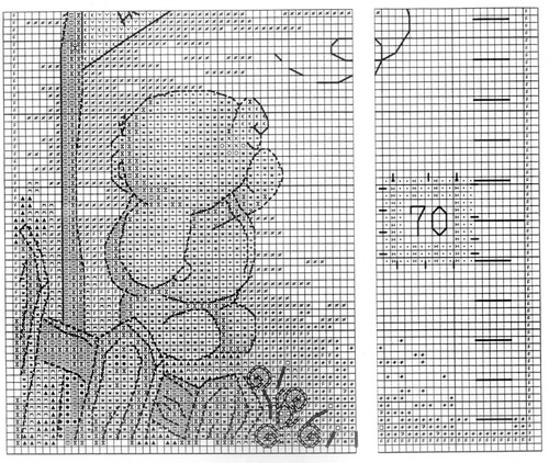 height chart 1.jpg