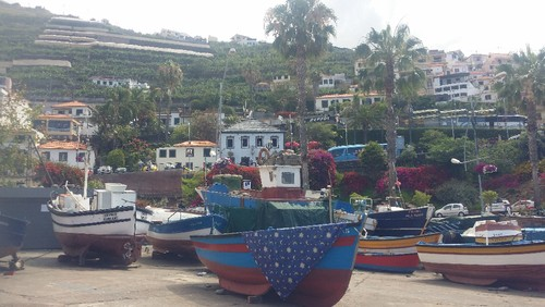 Madeira (365).jpg