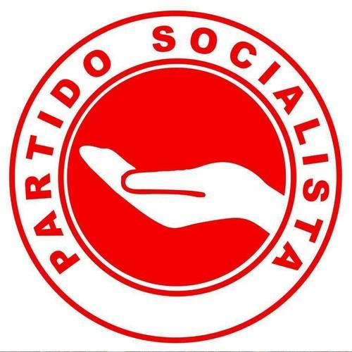 partido socialista.jpg