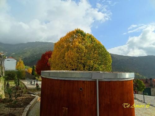 Fotos de Outono !!! 011.jpg