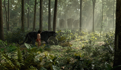 the-jungle-book-image.jpg