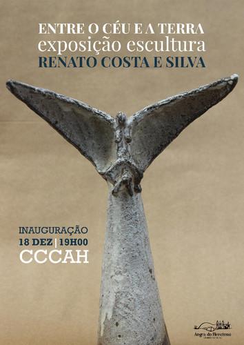 Cartaz Renato Costa e Silva.jpg