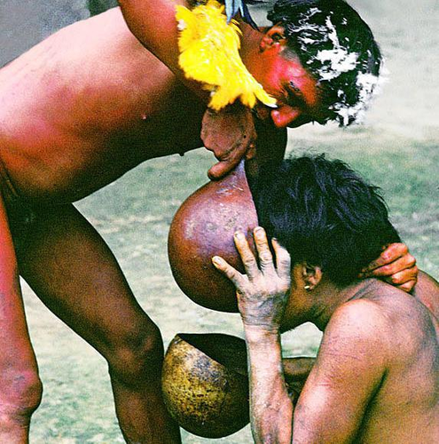 Yanomami.png