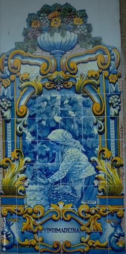 Vindimadeira In Andarilho de Andanhos.jpeg