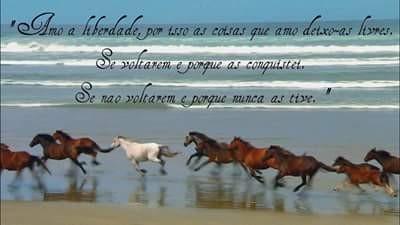 FB_IMG_1466624377041.jpg