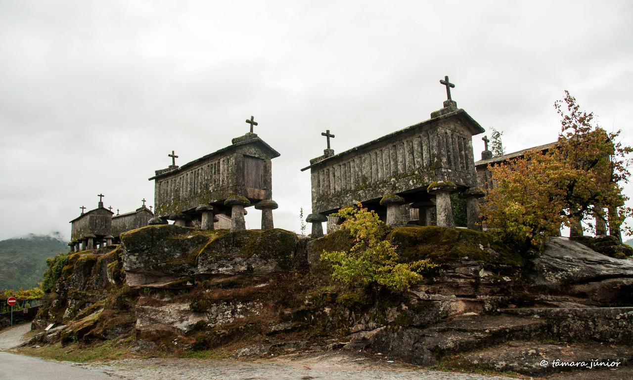 2012 - Três dias com o Neca (Porto de Rei e Alto