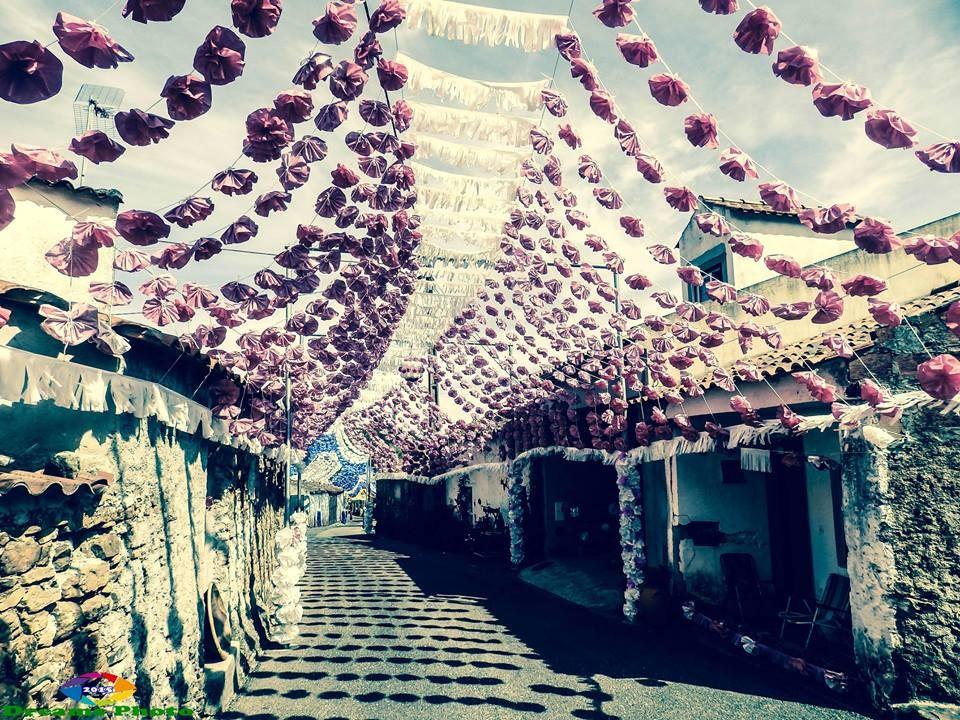 Rua Principal 5 - ornamentações 2015.jpg