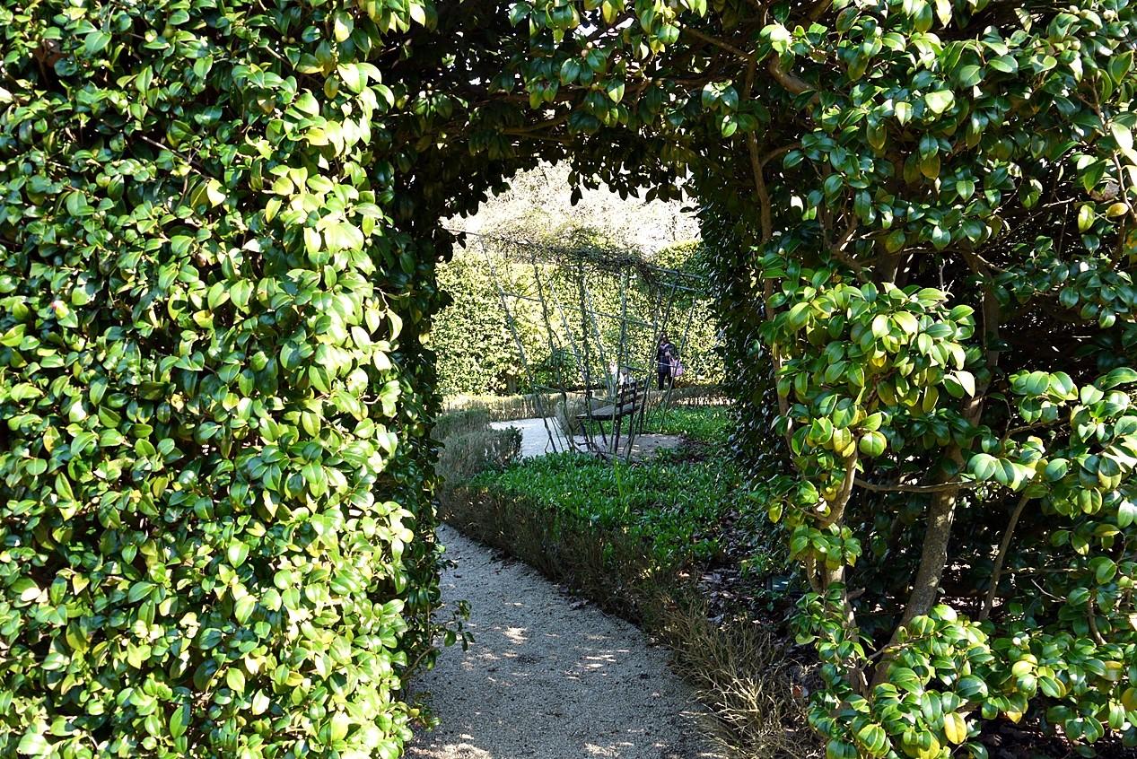 Jardim Botânico8.JPG