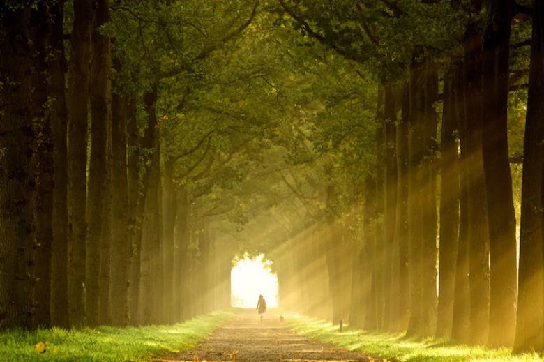 raios_luz_solar_06.jpg