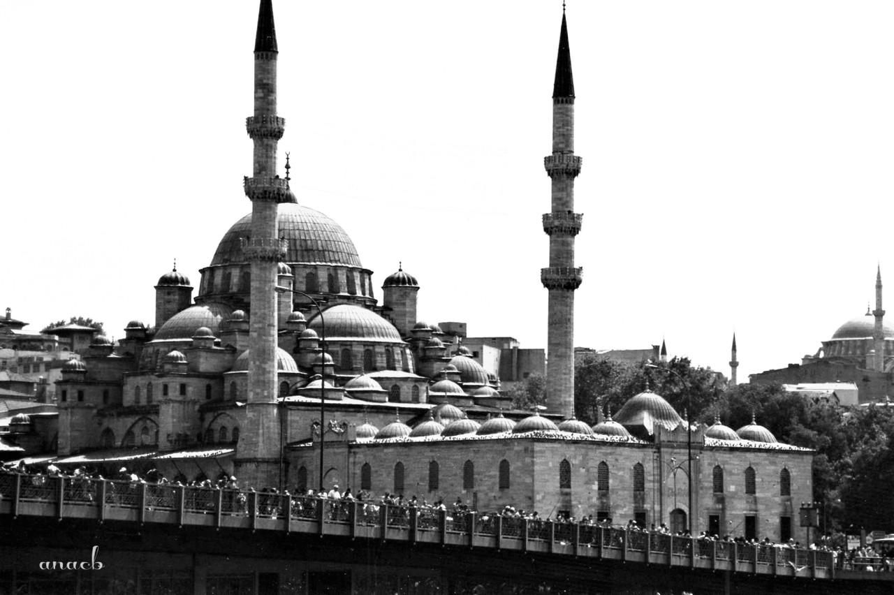 ao acaso #25 Mesquita Nova, Istambul, Turquia.jpg