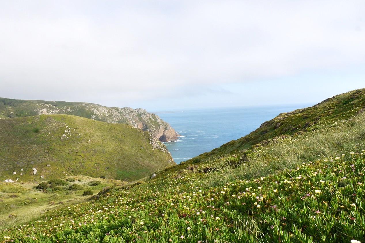 Cabo da Roca19.JPG