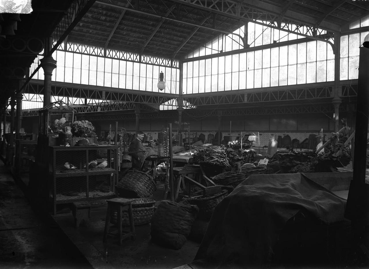 Mercado de Alcântara, interior, foto de José Art