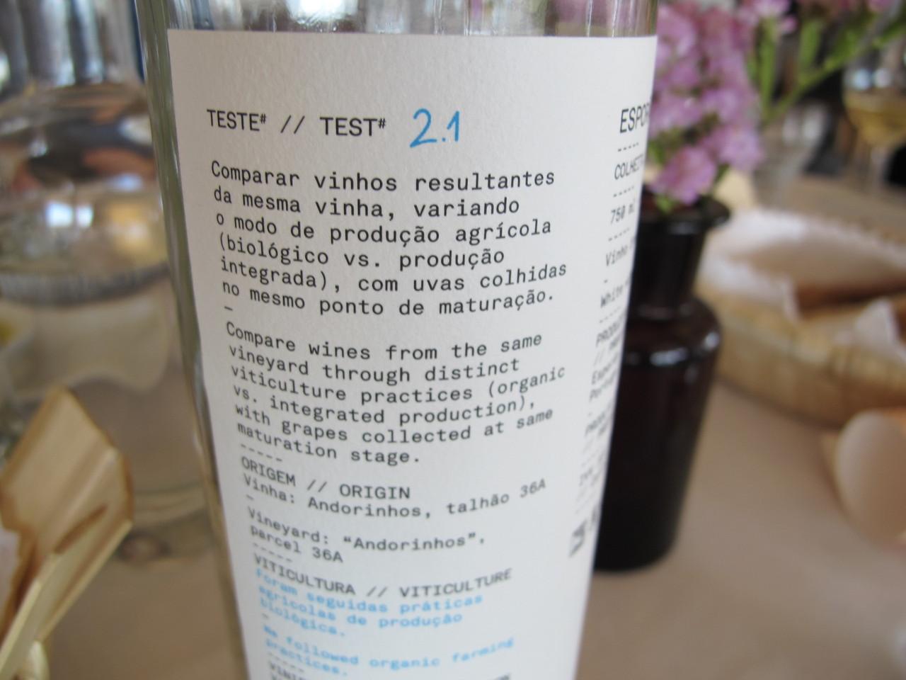 Teste