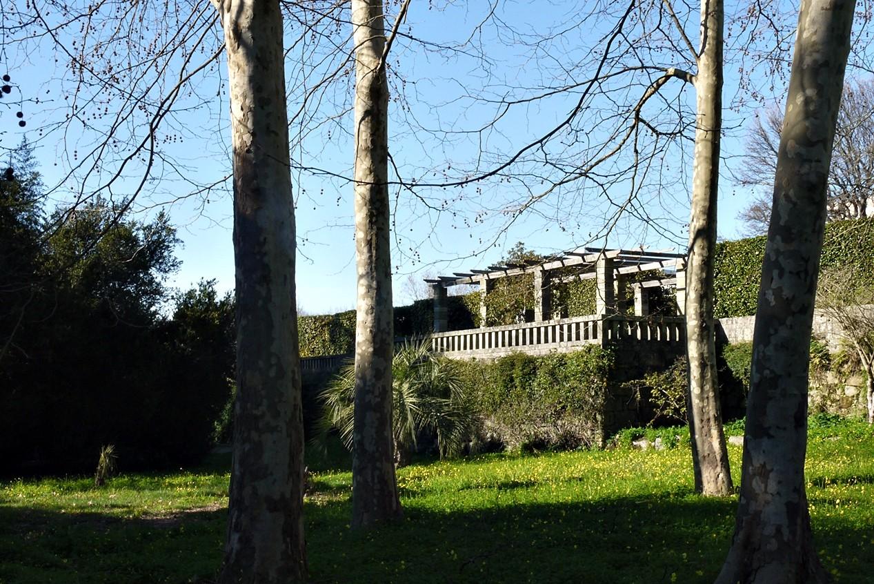 Jardim Botânico2.JPG