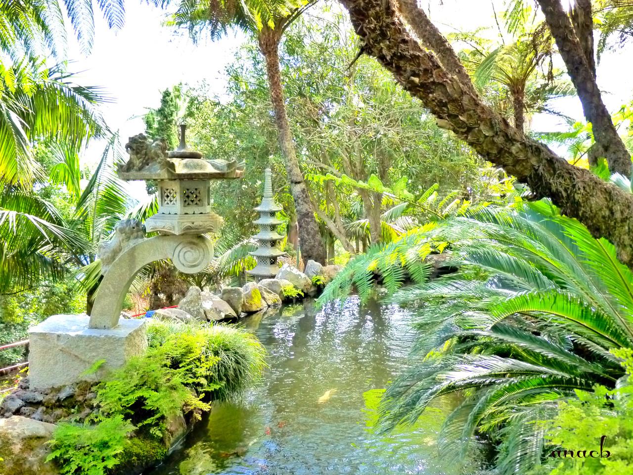 Funchal - Jardins Monte Palace (1227) assin.jpg