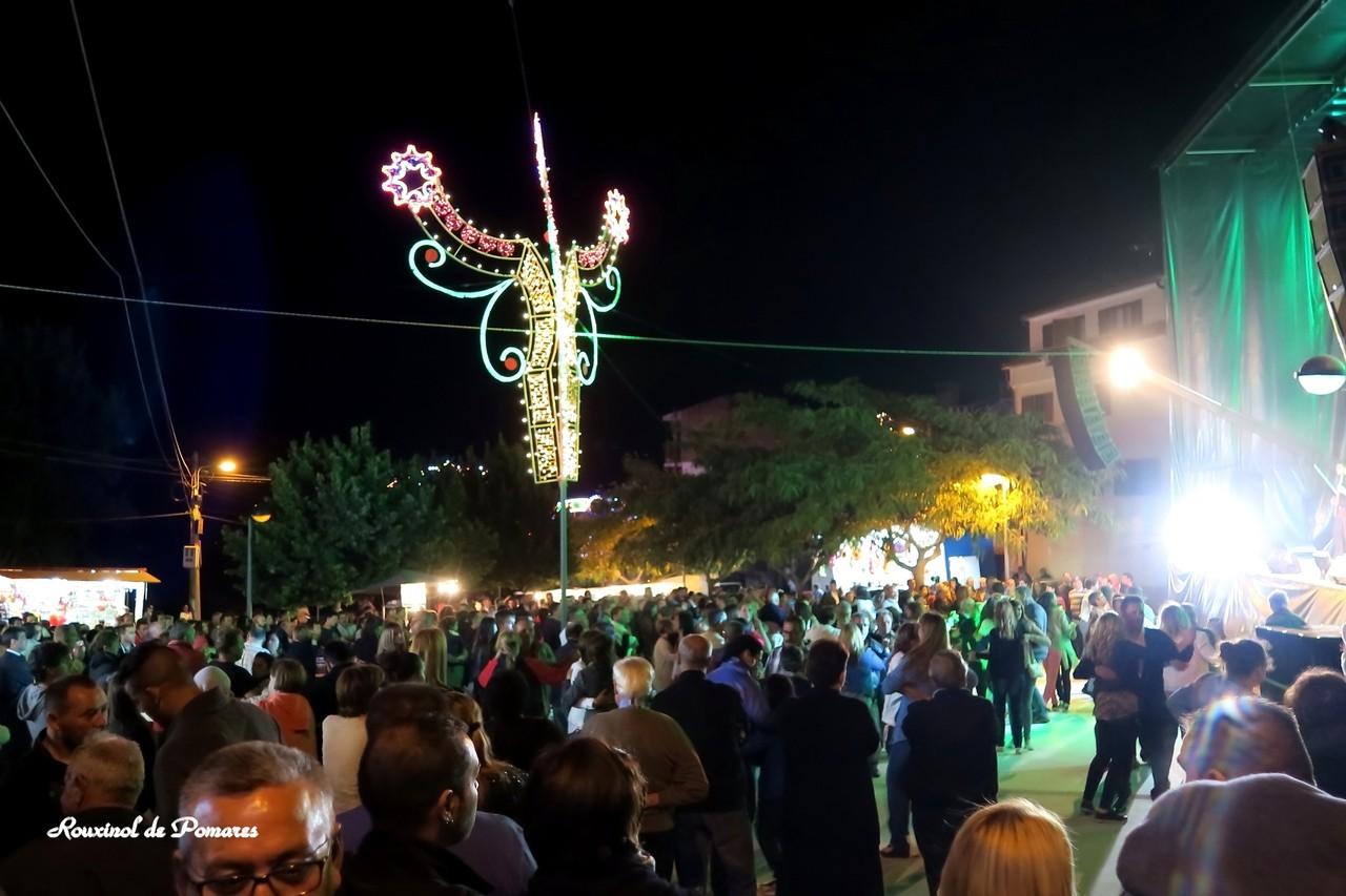 Festas Fiolhoso 2015 (6)