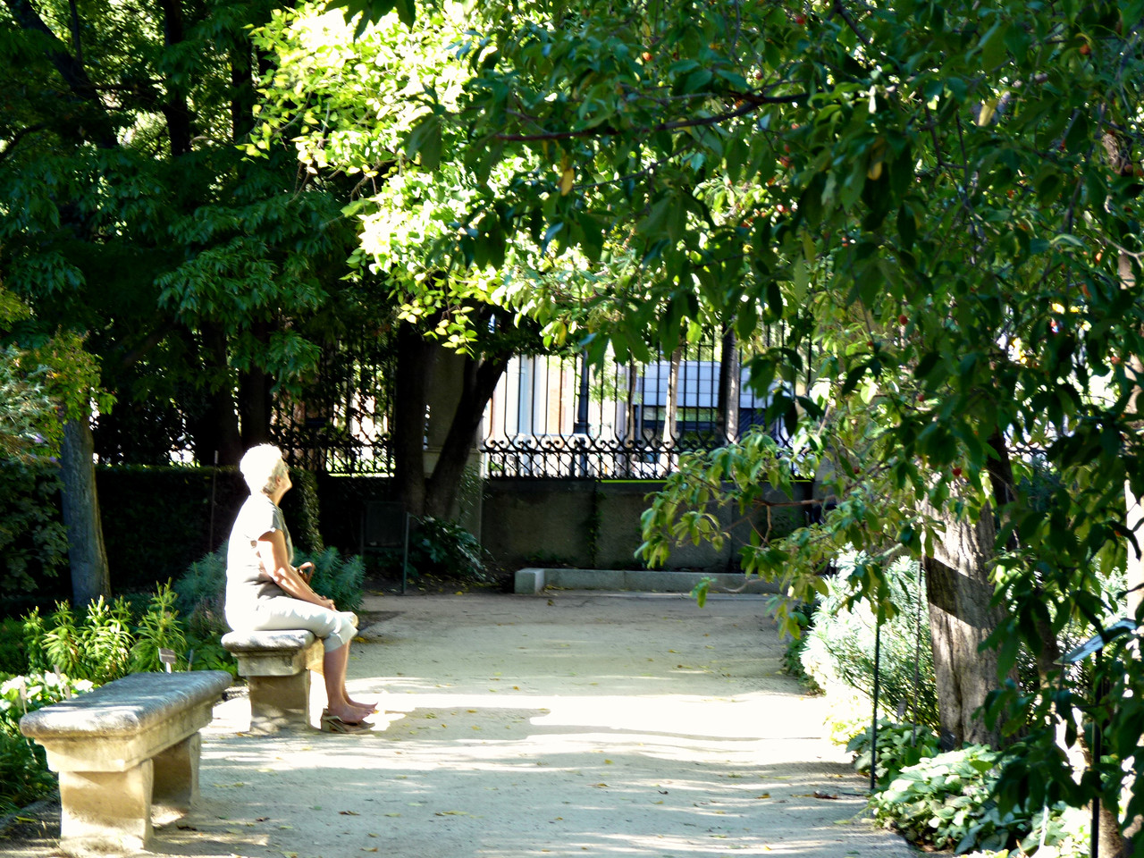 Romântica Madrid-Jardim Botânico (2).jpg