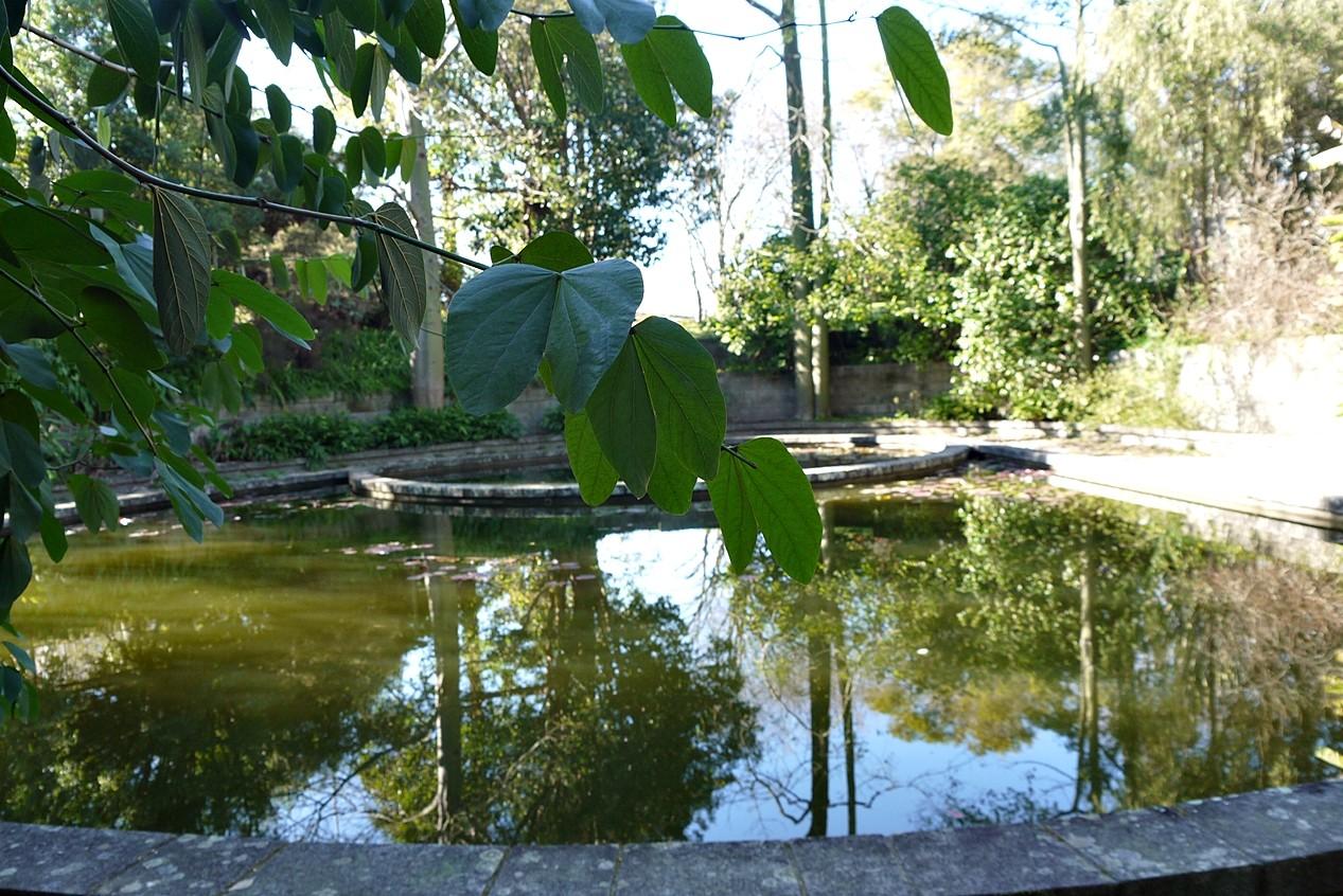 Jardim Botânico 3.JPG
