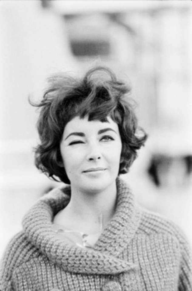 Elizabeth-Taylor-by-Sam-Shaw-saved-by-Chic-n-Cheap