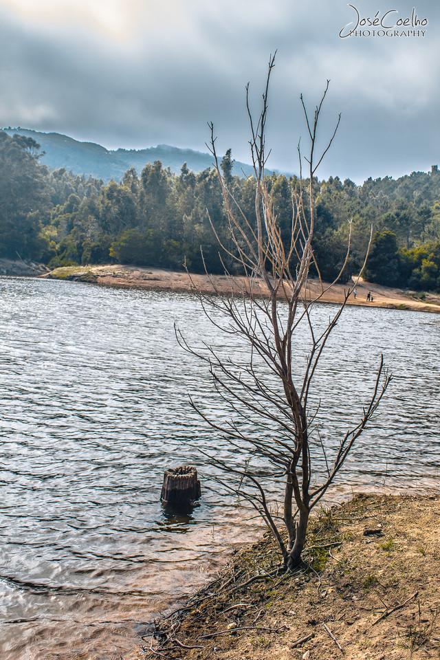Barragem do Rio da Mula (17).jpg