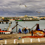 porto de pesca peniche