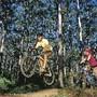 rotas_bicicleta_3.jpg