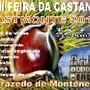 castmonte