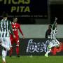 Zé Manuel comemora depois de marcar o golo