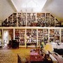 estantes, livros, sonhos 3