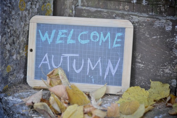 Welcome Autumn Mary_64©Joana Patita.jpg