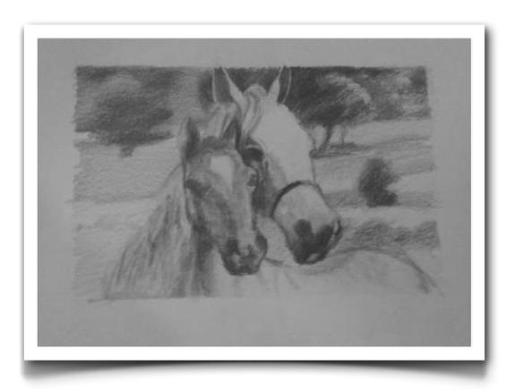 Horses11.png