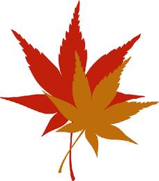 Folhas de Outono - Imagem Pixabay